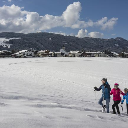 Winterzauber-Roas in Itter